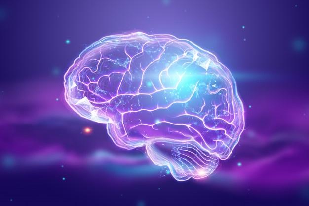 Manifiesto día internacional de la epilepsia 2020